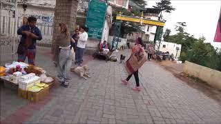 видео Дхарамсала