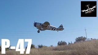 e flite p 47 razorback 1 2m   flight review