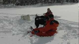 雪の原になった牧場は冬の遊び場として最高!