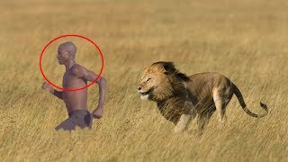 Most DANGEROUS ANIMALS in AFRICA with their CHARACTERS