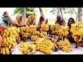 Ripe Banana Sweet Ball Making By Village Women - New Tasty Sweet Banana Chop