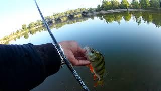 рыбалка в черте города ловля окуня на джег