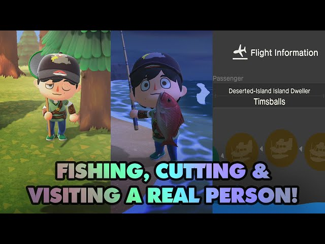 Red Snappers And Visiting A Real Person's Island! - Animal Crossing New Horizons