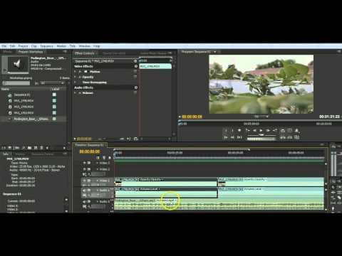 Introducing Adobe Premiere Pro CS4: Basic Video Editing Tutorial