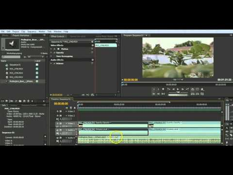 Introducing Adobe Premiere Pro CS4: Basic Video Editing Tutorial