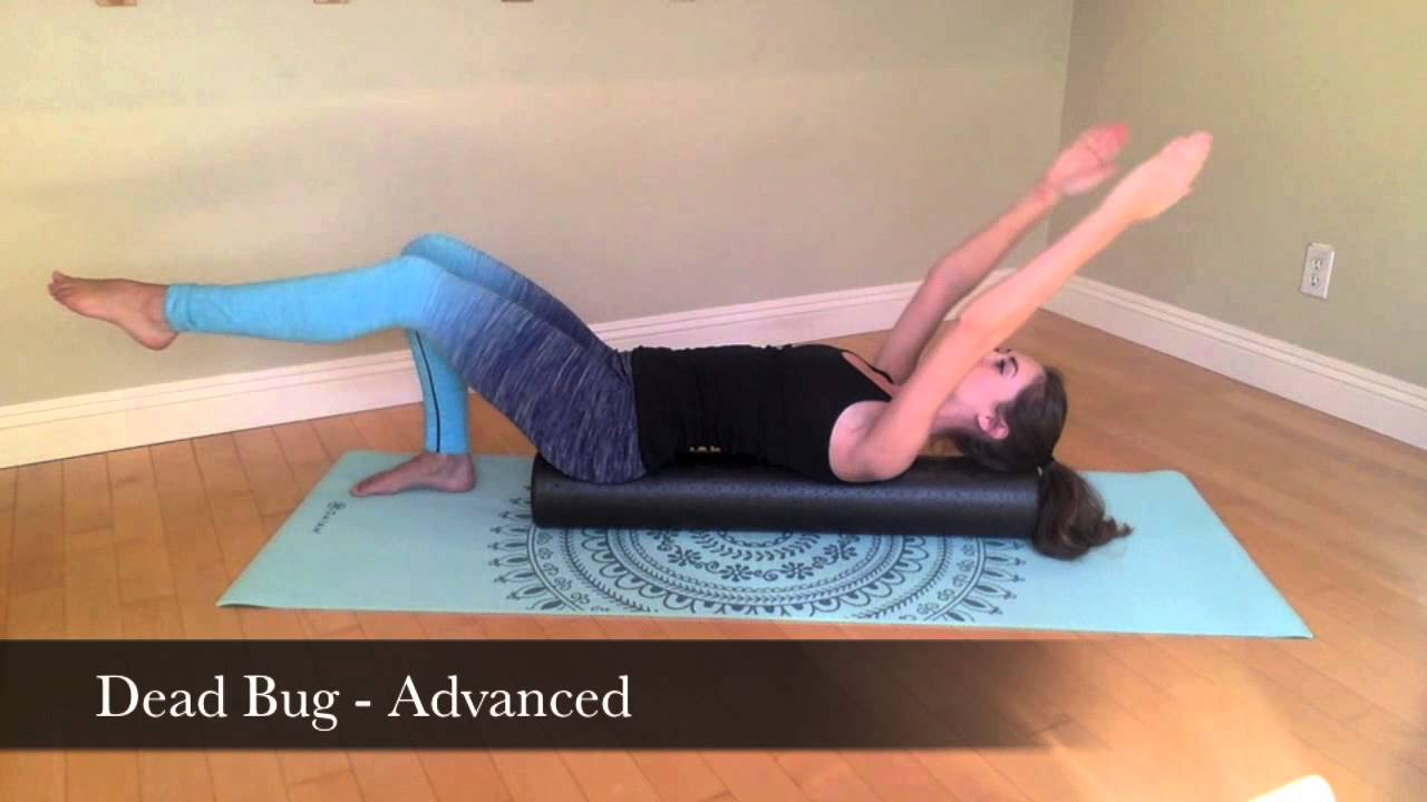 Buy foam roll physical therapy - Basic Foam Roller Exercises Synergy Physical Therapy And Pilates Studio Marin Youtube
