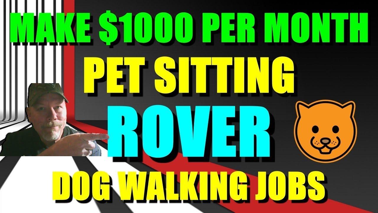 MAKE $1000 PER MONTH PET SITTING ROVER DOG WALKING JOBS