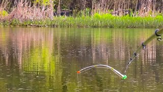 ReАКТИВНЫЙ КЛЁВ КАРАСЯ на боковой кивок Незабываемая рыбалка на карася на летнюю мормышку