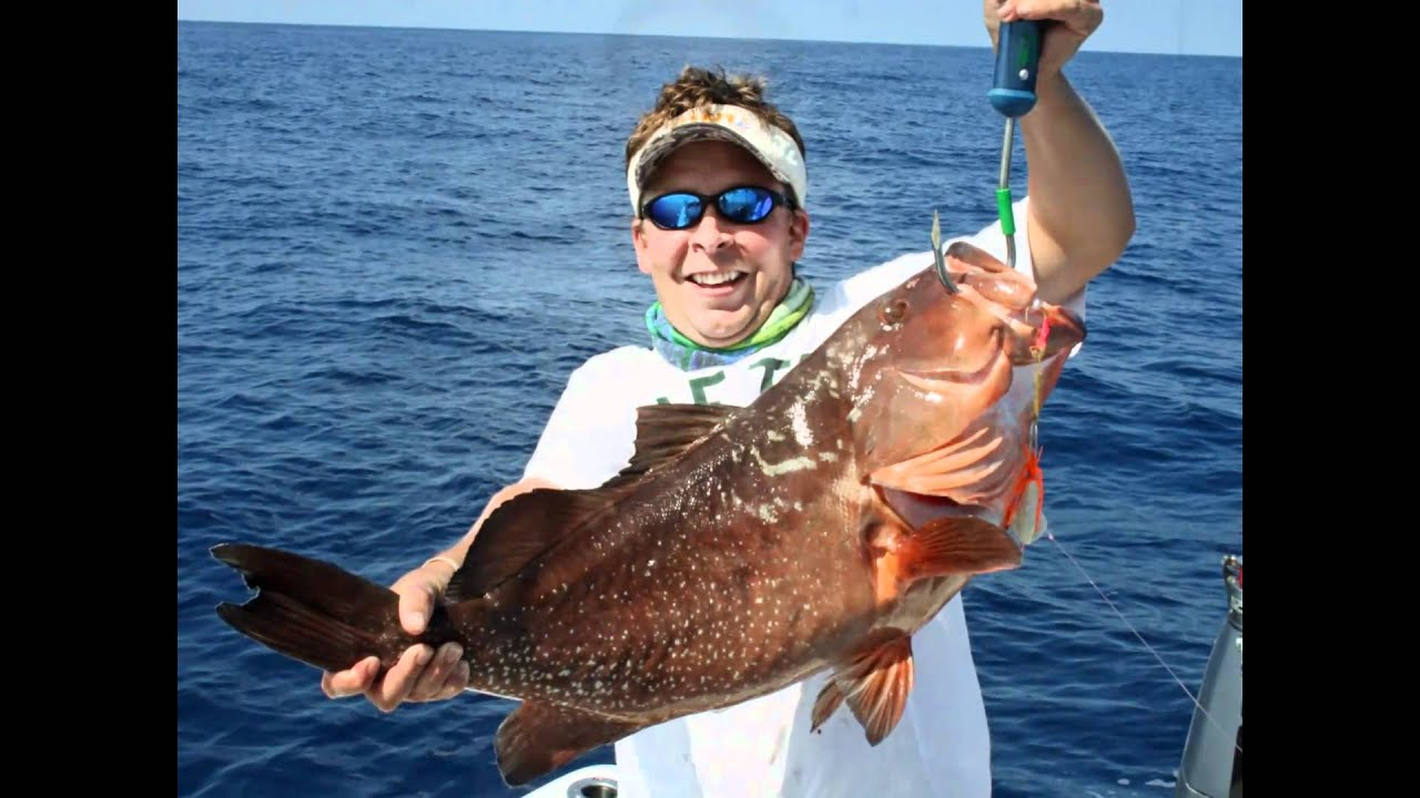 Big red grouper fishing video topsail island nc fish for Big island fishing