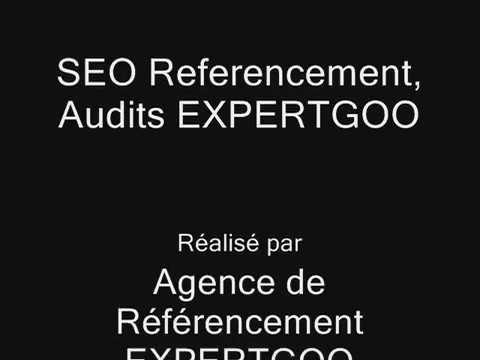 Agence Expertgoo audits Résutats Video