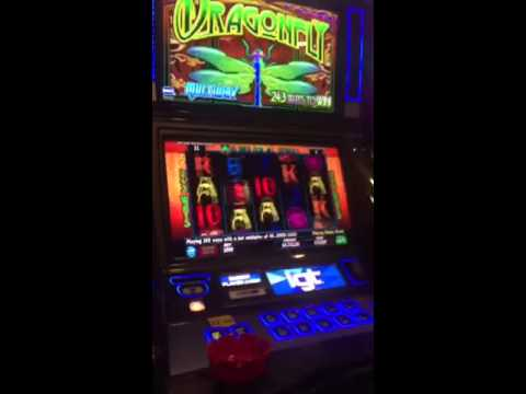$10 DRAGONFLY Slot MEGA HUGE JACKPOT Like Triple Fortune Dragon Max Bet
