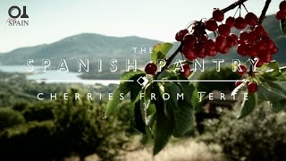 The Spanish Pantry: Cherries from Jerte Valley