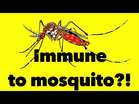 Why Do Mosquito Bite Me And Why Do Mosquitoes Bite Itch?