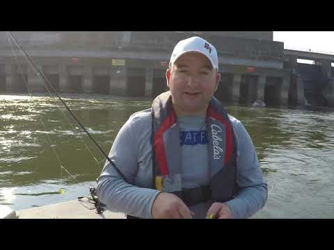 Skipjack fishing tips and tricks