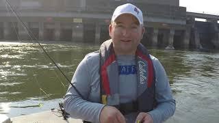 Skipjack fishing tips and tricks