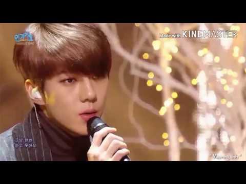 Exo Sehun singing & rapper