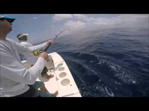 2016 Offshore World Championship | New Orleans Invitational Bilfish Tournament | Pacific Sailfish
