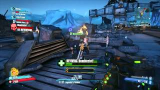 Borderlands 2 - Captain Flynt (TVH)