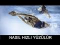MÜKEMMEL SELFIE ÇEKİLMEK! + UYGULAMA ÖNERİLERİ - YouTube