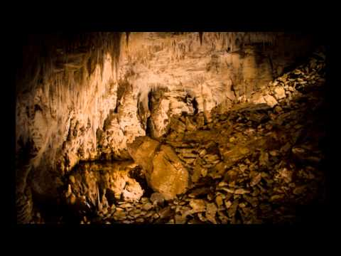 Waitomo Caves Custom Day Tours New Zealand Port of Tauranga