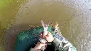 Рыбалка на севере. Проверка сети, соление рыбы. Часть 2.