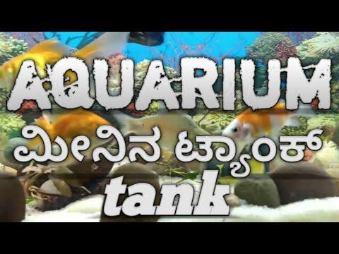 Aquarium tank setup in kannada