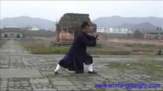 Wudang Taiji 108 - Part 2 - Master Yuan Xiu Gang (武当太极108式 - 第2段 - 袁修刚)