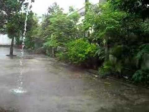 Rain storm in Cuc Phuong, Vietnam