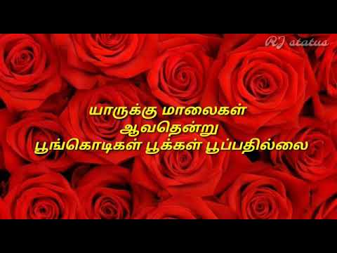 Ennavale adi ennavale tamil love songs songs download | ennavale.