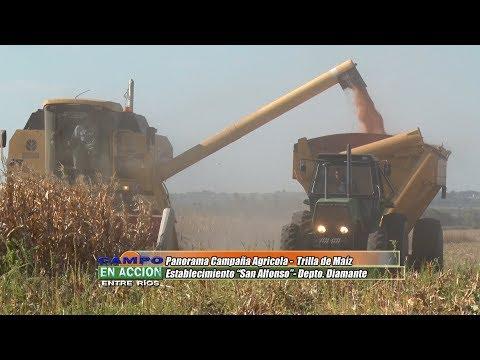 """Cristhian Bergomás y Roberto Lederhos - Productores Agropecuarios - Trilla de Maiz en Establecimiento """"San Alfonso"""""""
