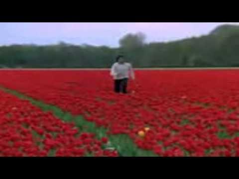 Dekha Ek Khwab To Lyrics - Silsila | Kishore Kumar,Lata ...