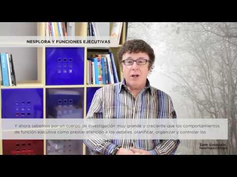Sam Goldstein y las Funciones Ejecutivas - Nesplora Technology & Behavior