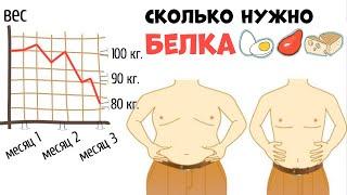 Сколько нужно есть Белка чтобы Похудеть и Трансформировать Фигуру