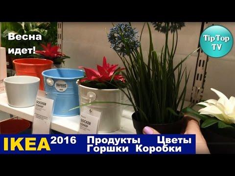 ИКЕА 2016 ВЕСНА ИДЕТ ПРОДУКТЫ ЦВЕТЫ ГОРШКИ КОРОБКИ/IKEA