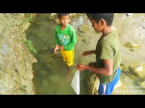 Amazing village boys fishing in nepal.