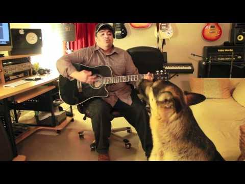 Dog Singing With Guitar
