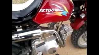 skygo bobo 50cc greece(monster energy)