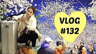 VLOG#132: Spring In Korea (Day1)| Anna Cay ♥