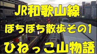 JR和歌山線王寺から和歌山ぼとぼち散歩(その1)