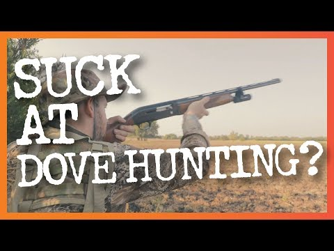 8 Common Dove Hunting Mistakes & How To Fix Them