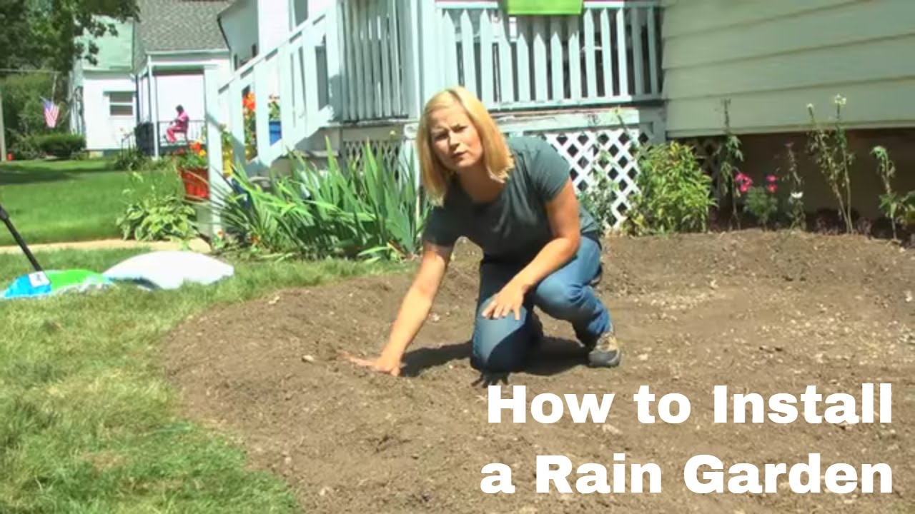Benefits Of Rain Gardens