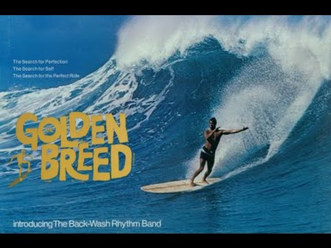 Vintage Surfing Film (HD)  /  The Golden Breed Surf Movie Re-Edit