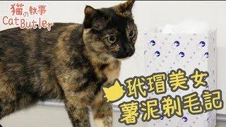 [貓の執事 CatButler]客人上門中,薯泥剃毛記!