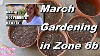 March Gardening - It's Warming Up! Planting Spring Seeds Outside, Pruning, & More!