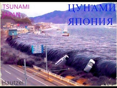 Цунами Япония 2011