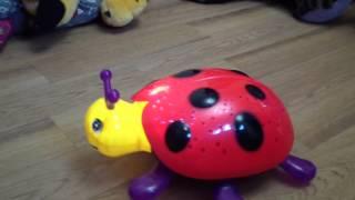 Обзор, распаковка божьей коровки  - Overview unpacking ladybug