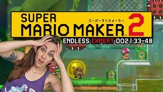 LET IT RIDE! ENDLESS EXPERT 002 | 33-48 // SUPER MARIO MAKER 2