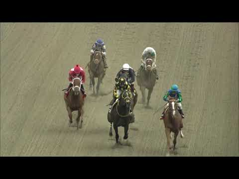 video thumbnail for MONMOUTH PARK 10-10-20 RACE 2