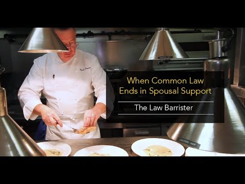 Will Your Common Law Relationship End In Spousal Support?