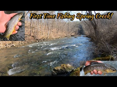 Fly Fishing In Fisherman's Paradise! Tough Fishing, Gorgeous Scenery! Winter Brown Trout Fishing PA!